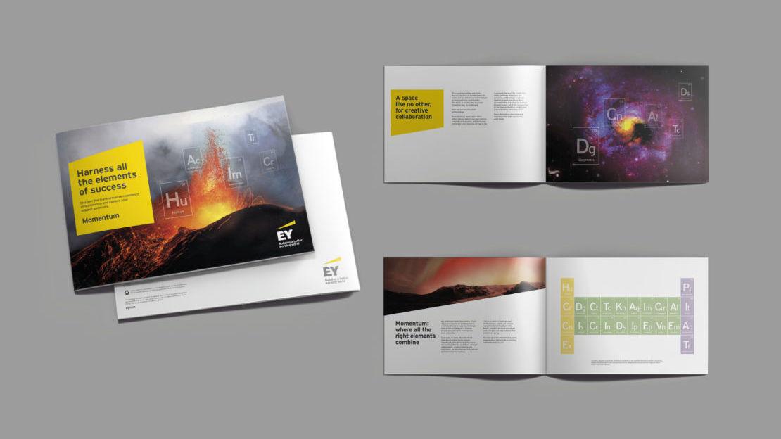 EY_brochure_mockup-1110x624