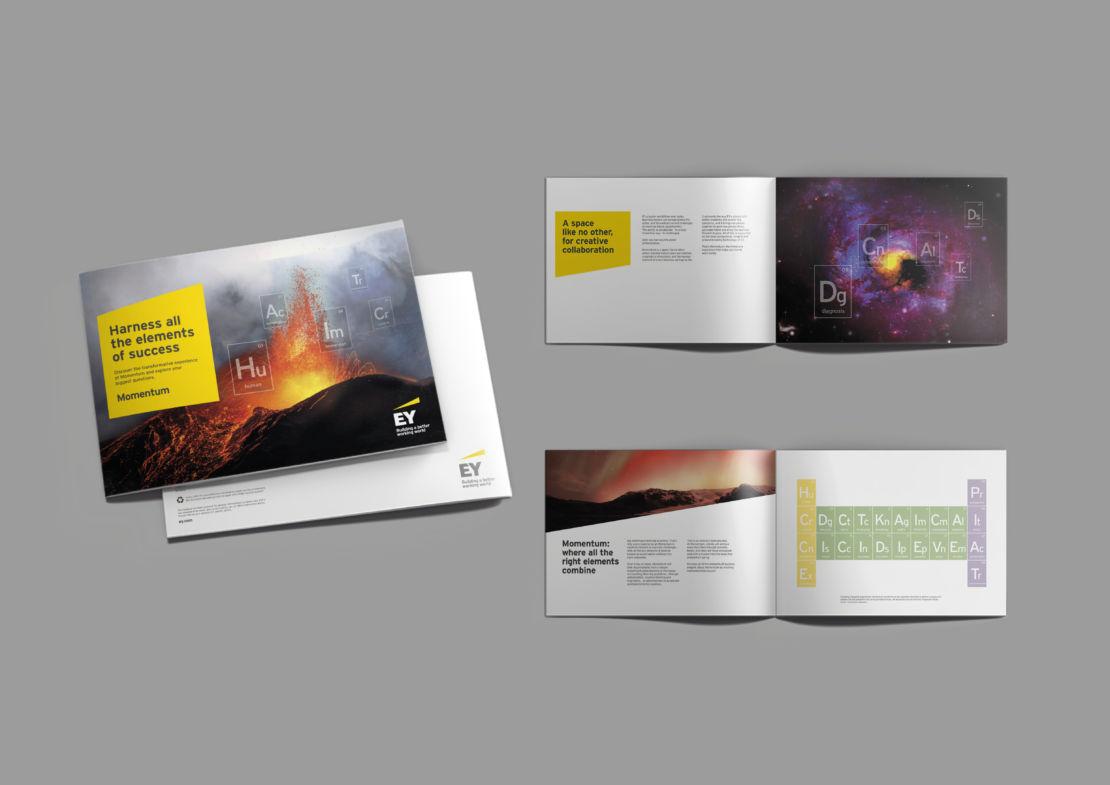 EY_brochure_mockup