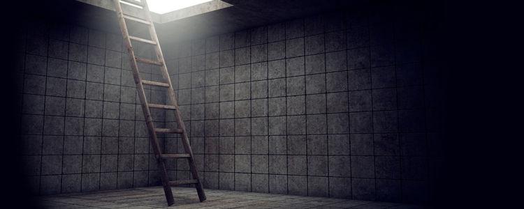 ladder_blog_image